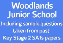 woodlands jr SATs